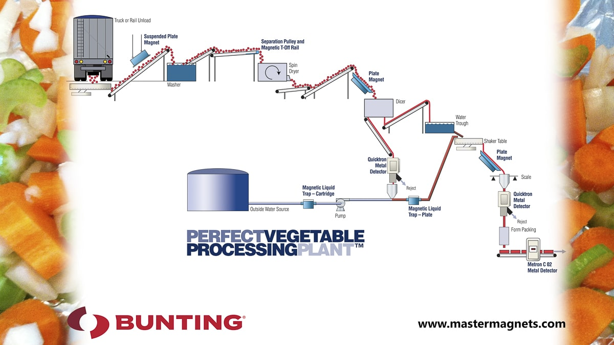 Perfect Vegetable Processing